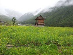 Chitkul, Sangla Photo