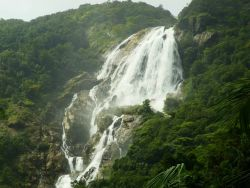 Dudhsagar Waterfall - Goa Photo