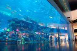 Dubai Mall - Dubai Photo