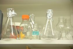 Beakers in a lab Photo