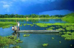 India's Largest River Island - Majuli, Assam Photo