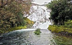 Greenery And Tranquility In Bhandardara, Maharashtra Photo