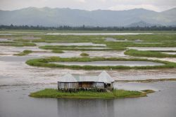 Loktak Lake Photo