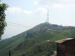 Kurseong, West Bengal Photo