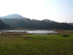 Thekkady, Kerala Photo