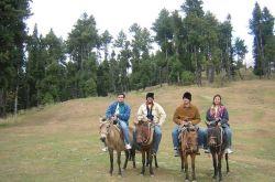 Pahalgam, Jammu & Kashmir Photo