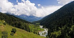 Pahalgam, Jammu & Kashmir Photo