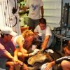 Placing tracking device on sea turtle prior to returning to ocean. Photo