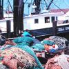 Fish nets, floats, and fishing boats at Co-op Seafood dock Photo