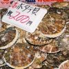 Patinopecten caurinus scallop for sale that the Shiogama market in Japan. Photo