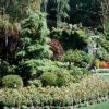 Butchart Gardens. Photo