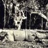 Rhino hunting in Borneo Photo