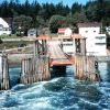 The ferry dock at Orcas Island Photo